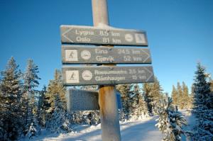 Bare noen kilometer på ski til Lygna.